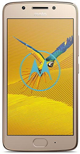 Motorola Moto G5 Smartphone (3GB RAM/16GB) Fine-Gold
